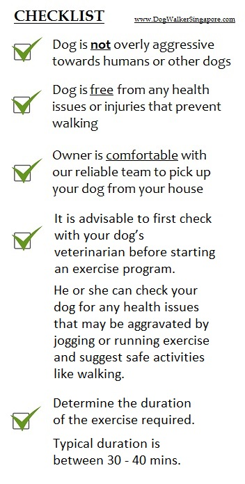 dog walking services in singapore